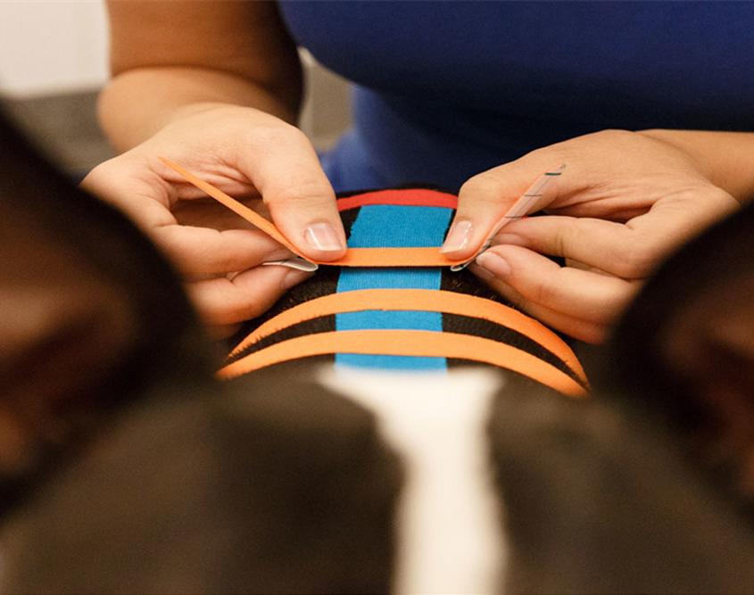 medical taping bij honden fysiotherapie bij dieren