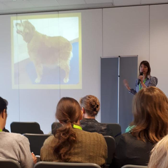 lezing-honden-fysiotherapie-hydrotherapie-voor-dieren